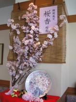 Tsuru24