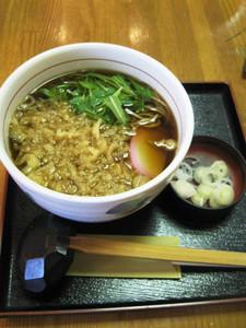 Tanuki2