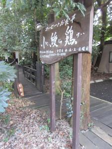 Kojukei001