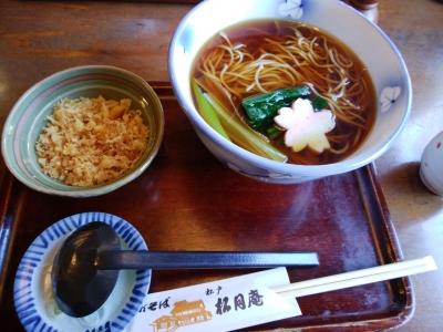 Tanuki_1
