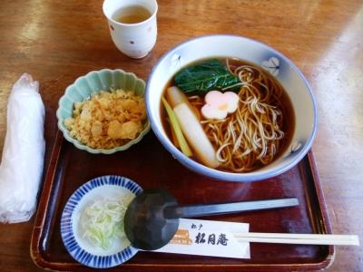 Tanukisoba1